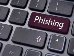 essay writing phishing scams
